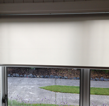 sheer roller blind on window looking out to the driveway