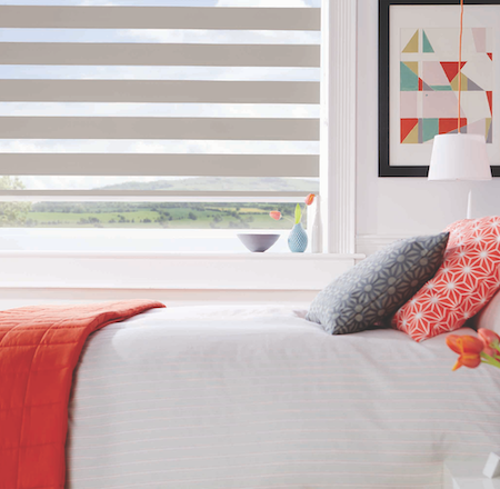 vision blinds in the bedroom with a view outside